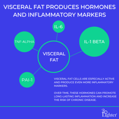 Inflammatory Markers Visceral Fat