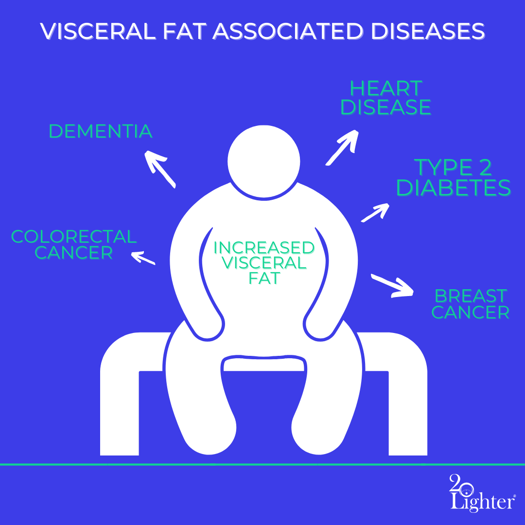 visceral fat infographic